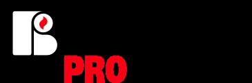 Bergé Pro - Logo 45 ans d